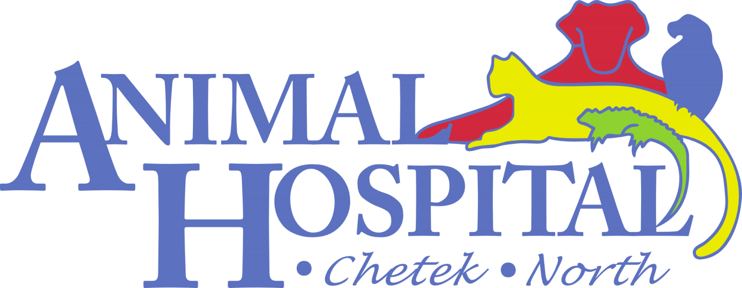 Animal Hospital North Rice Lake Veterinarian Animal Hospital of Chetek Vet